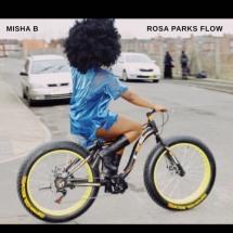 misha b rosa park flow